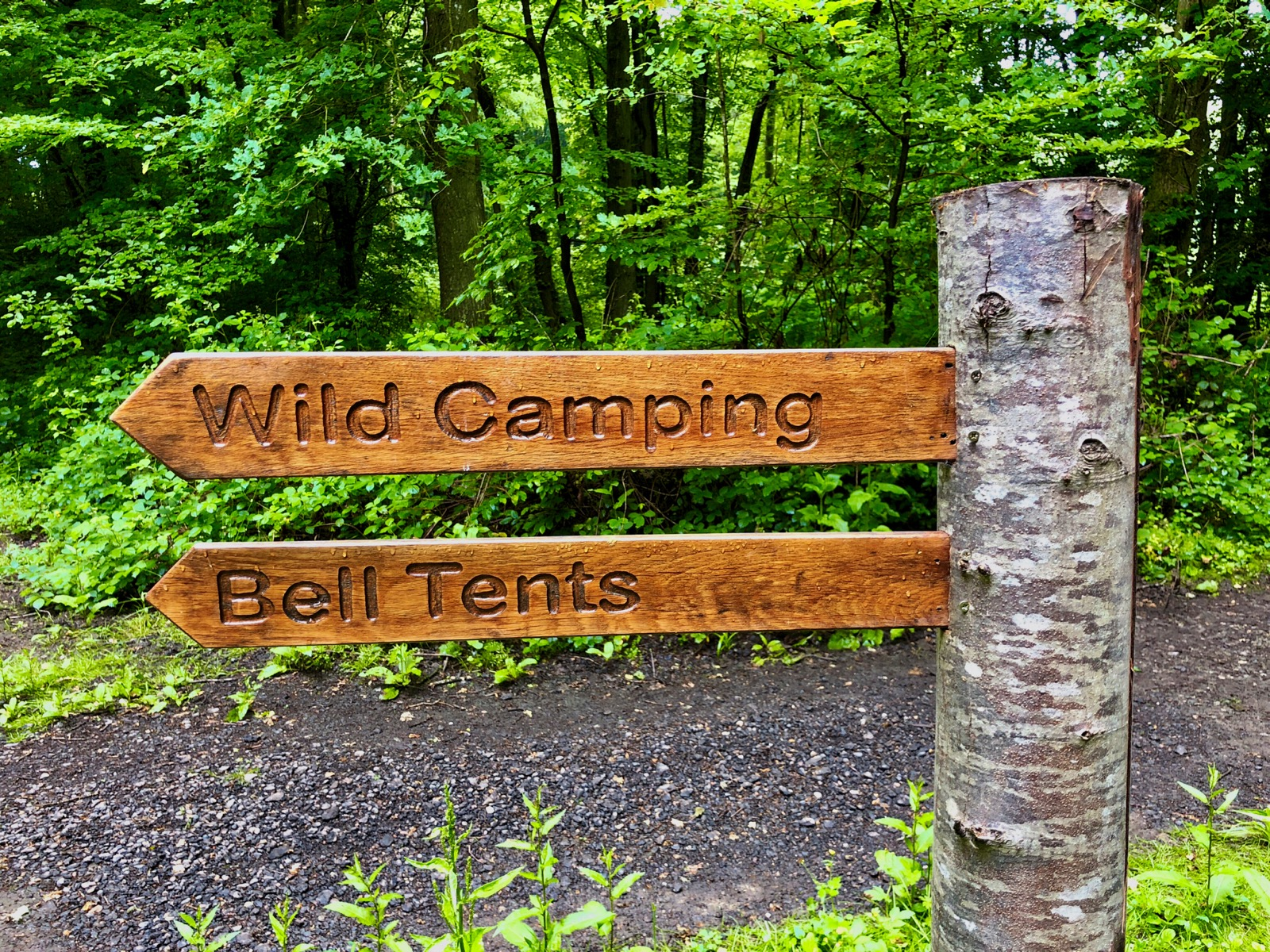 Signs of wild camping