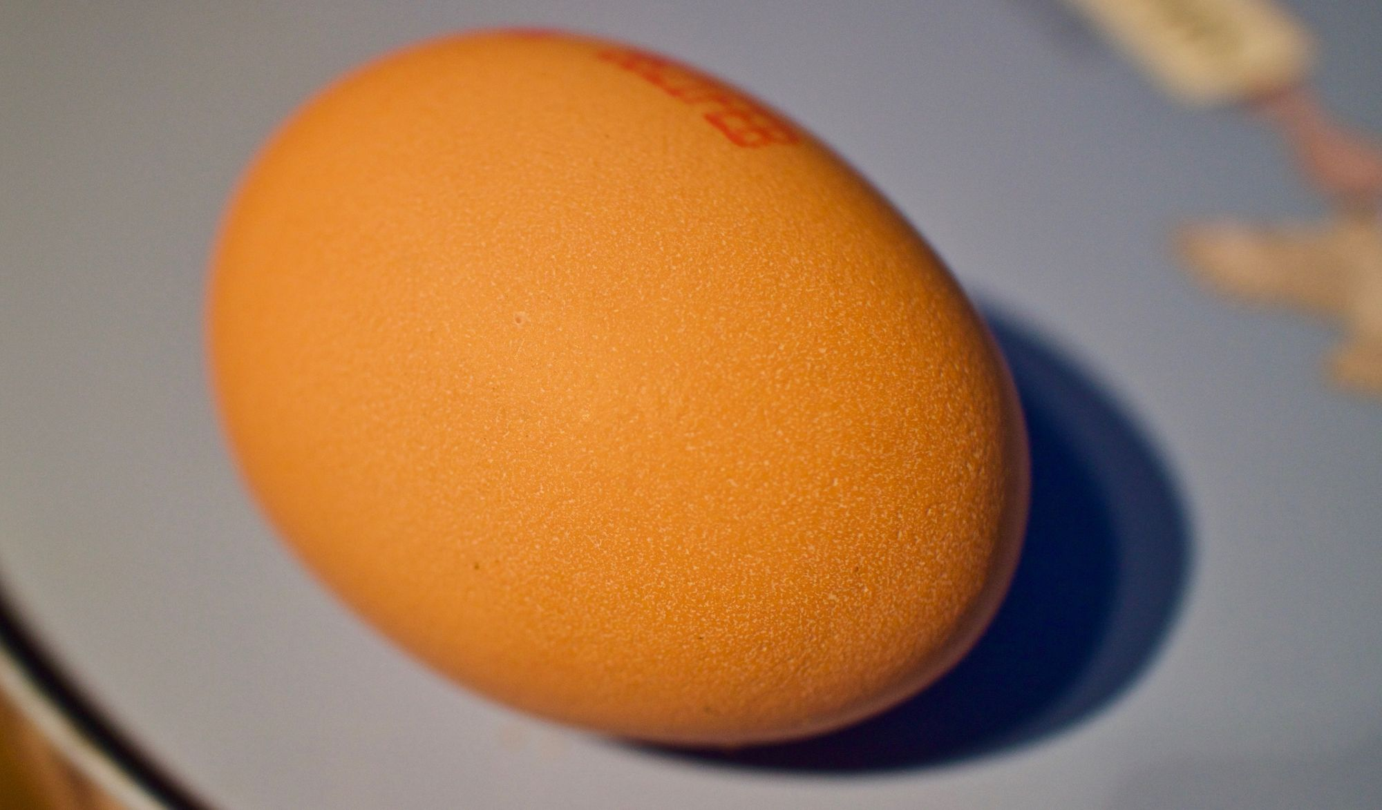 The World Record Egg: hacking attention for mental health?