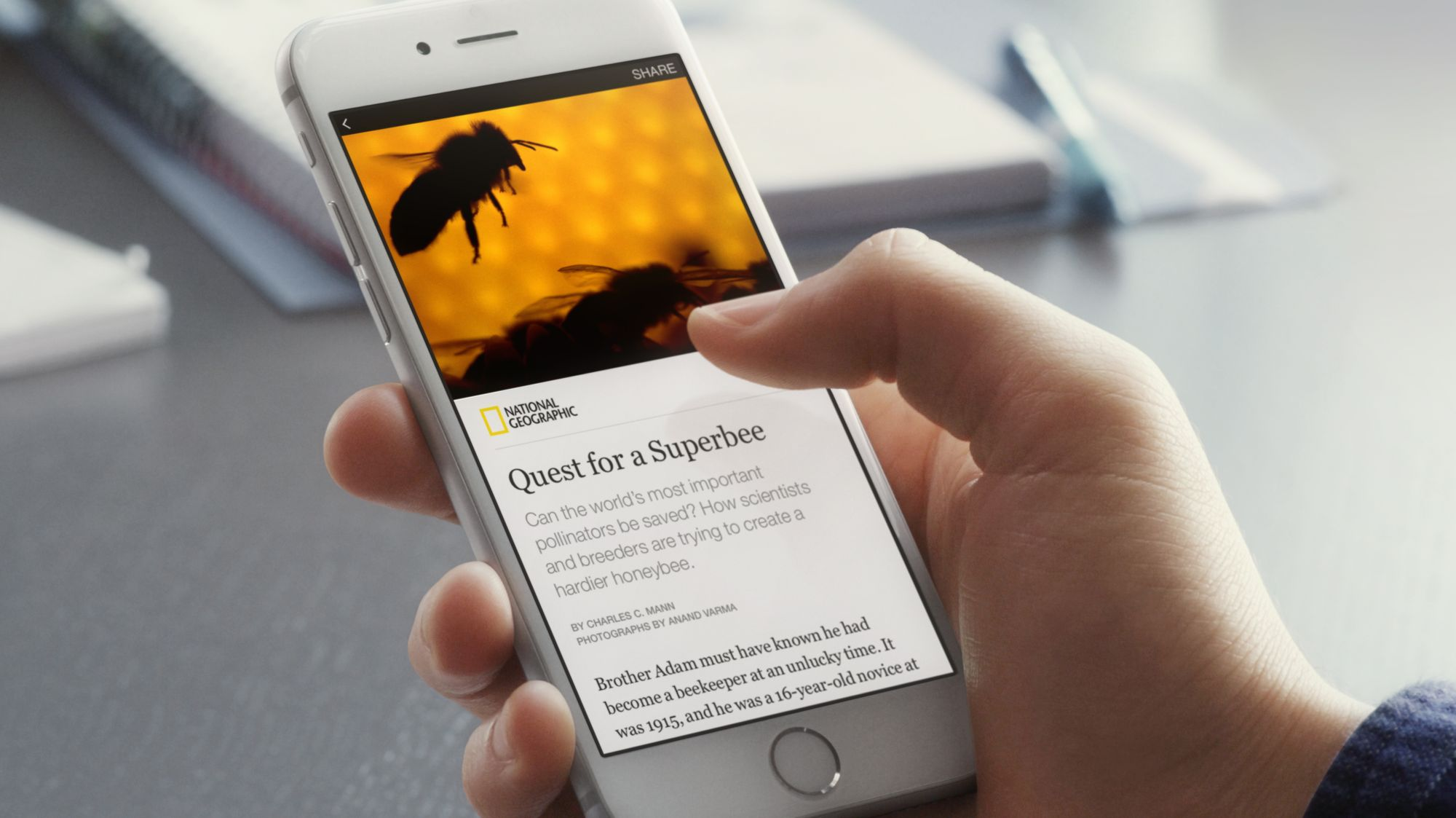 Facebook's Instant Articles - an instant opportunity (with a price)