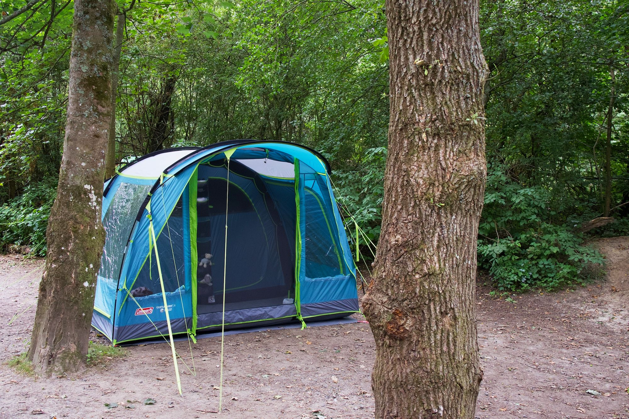 A tent in the woods at Blackberry Wood campsite in Sussex.